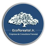 Logo Eco Florestal Jr.